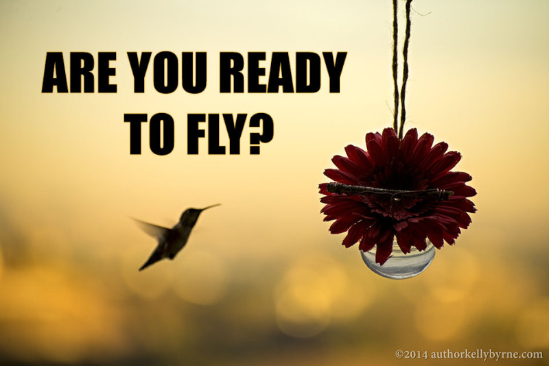 Author Kelly Byrne meme ready to fly